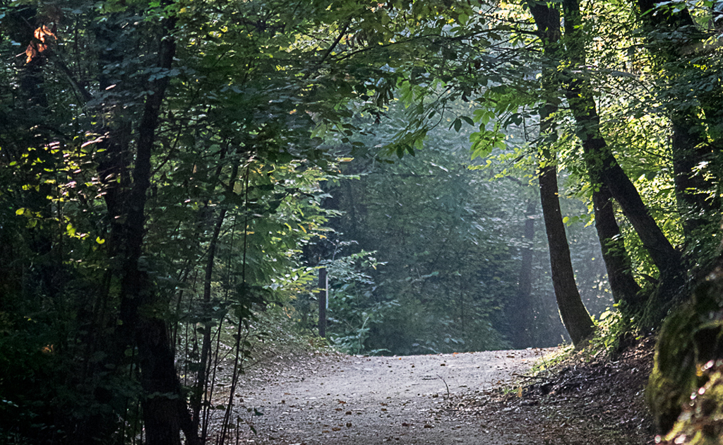 sentieri nel Parco delle valli d'Argon